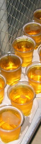 Beer!  (February 2006)